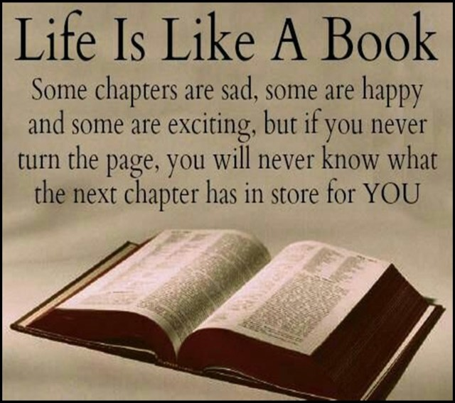 Quotes about Life Is Like A Book (25 quotes)