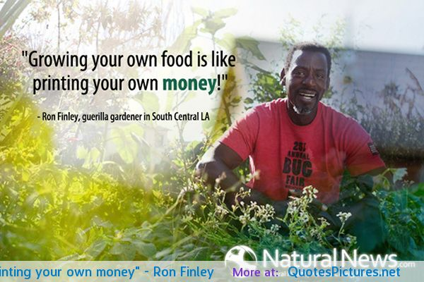 Quotes About Growing Your Own Food 15 Quotes