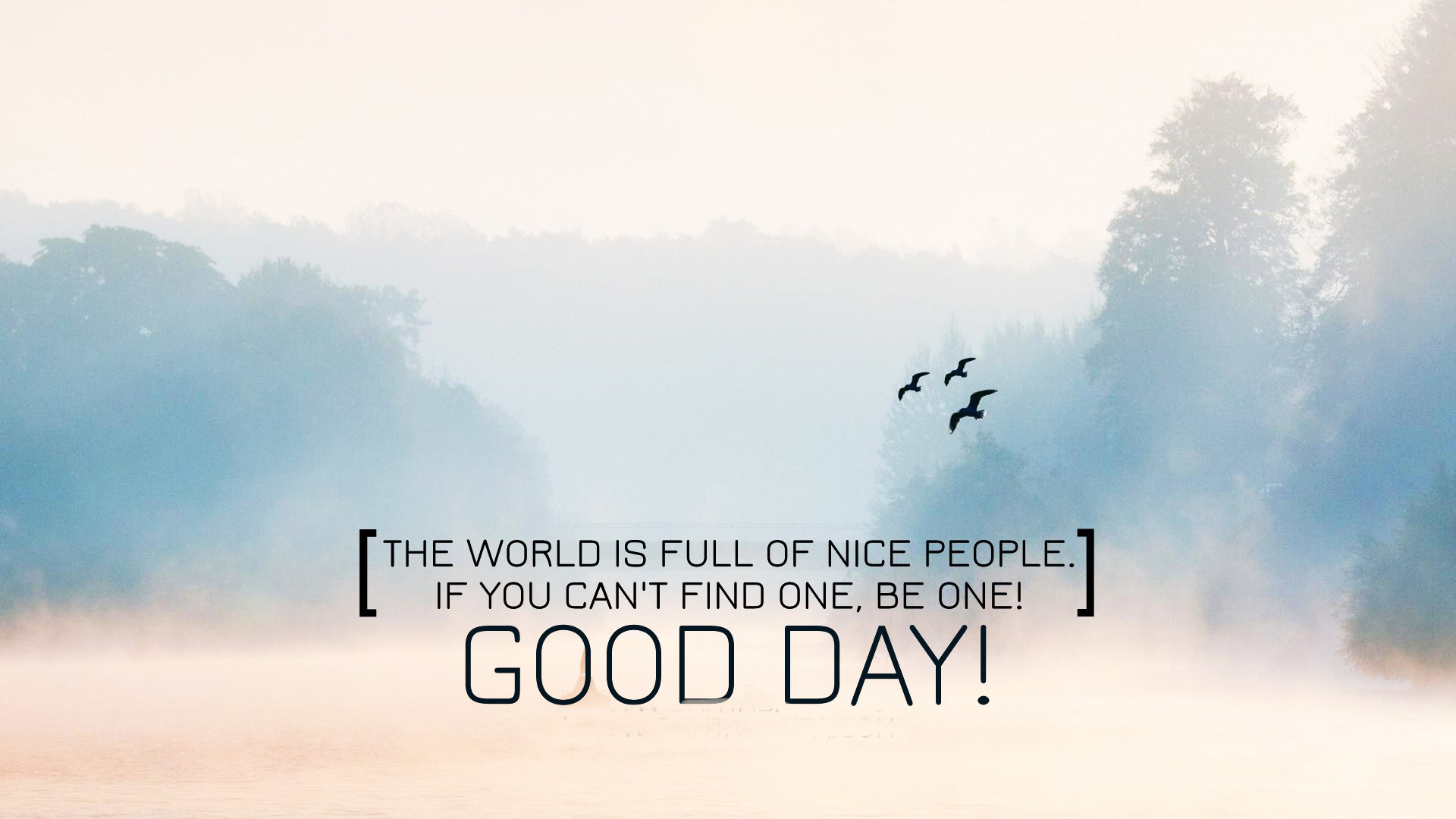 Quotes About Great Day 388 Quotes