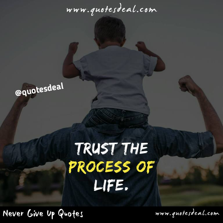 Trust the process of life