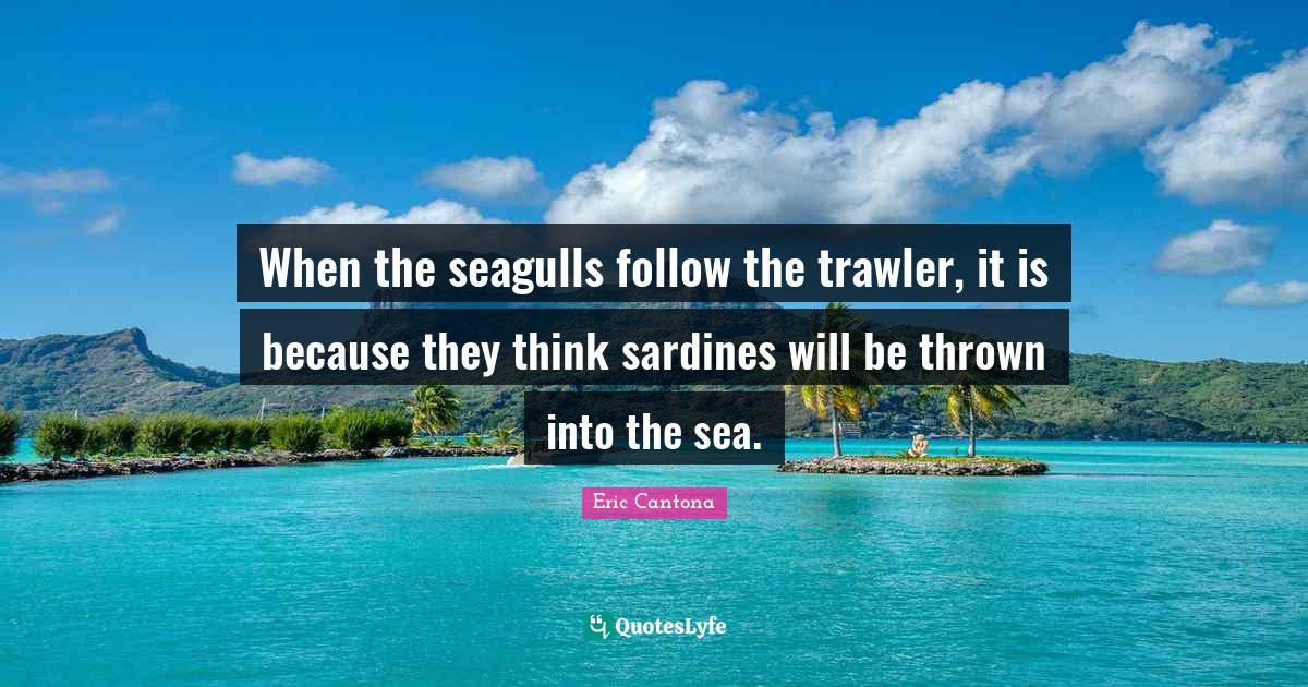 """""""when the seagulls,"""" sip, pause, """"follow the trawler,"""" pause, hint of a smile, """"it's because they think,"""" pause, """"sardines, will be thrown into. When The Seagulls Follow The Trawler It Is Because They Think Sardine Quote By Eric Cantona Quoteslyfe"""