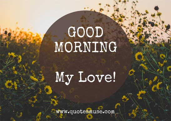 125 Cute Good Morning Wish to Lover for Romantic Couple