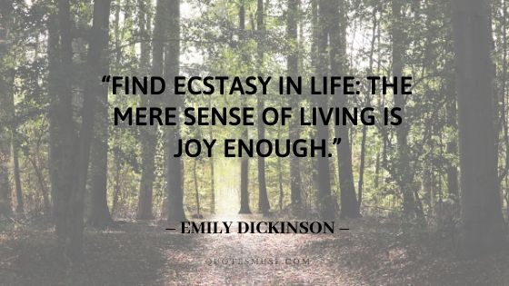finding joy quotes