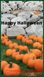 halloween background for iphone pic