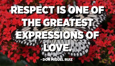 Respect is one of the greatest expressions of love. - Don Miguel Ruiz