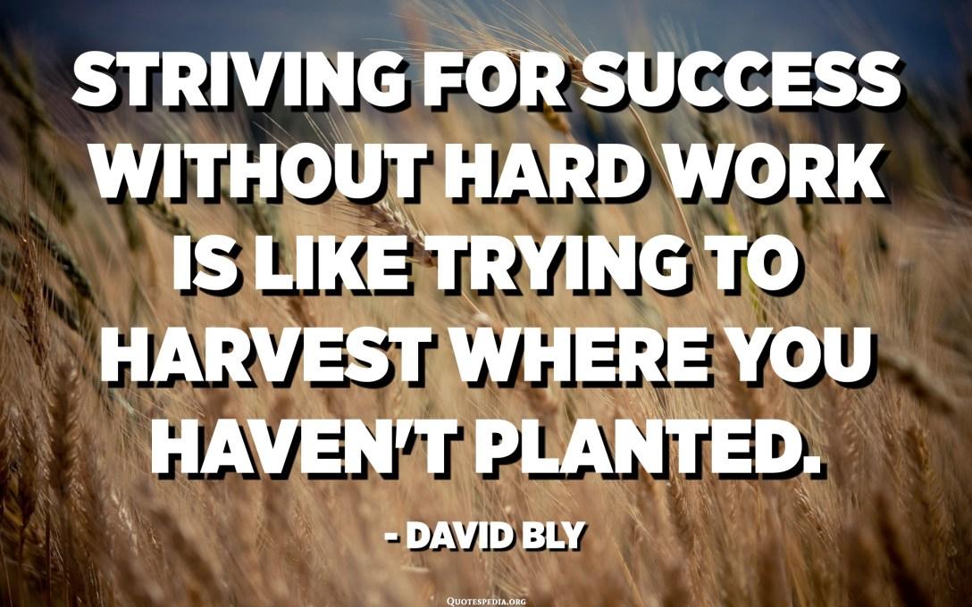 在沒有艱苦努力的情況下爭取成功就像在未種植的土地上收穫。 -大衛·布萊