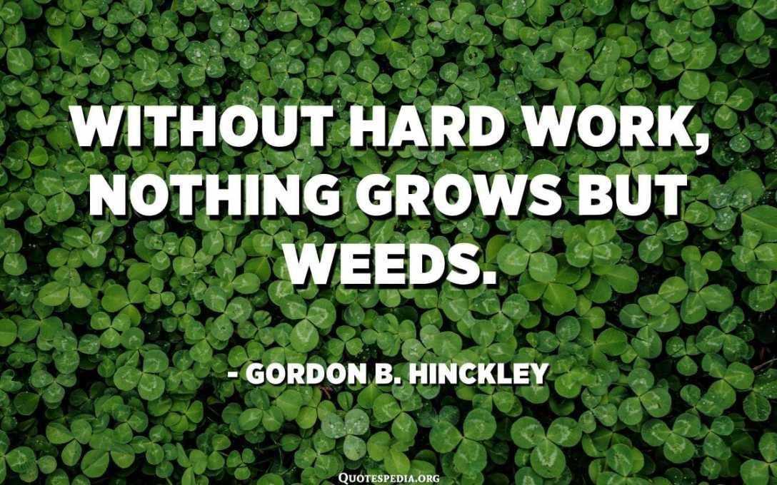 Ilman kovaa työtä mikään ei kasva, mutta rikkakasvit. - Gordon B. Hinckley