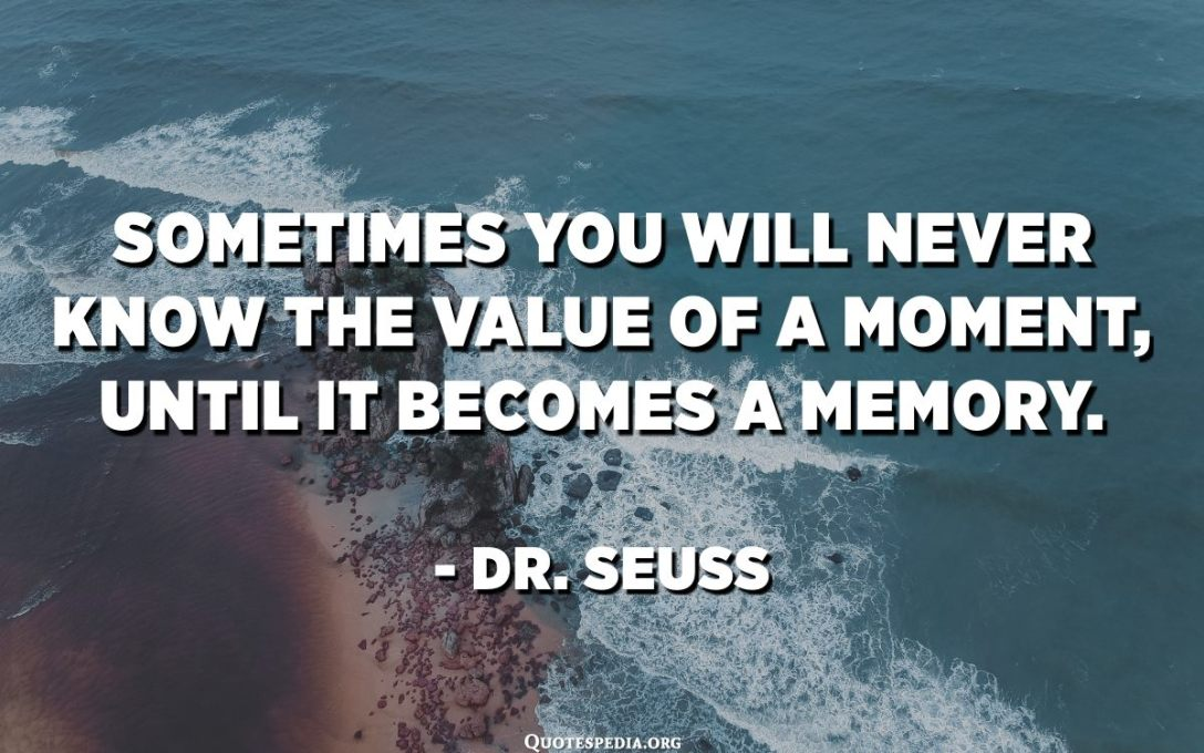 Sometimes you will never know the value of a moment, until it becomes a memory. - Dr. Seuss