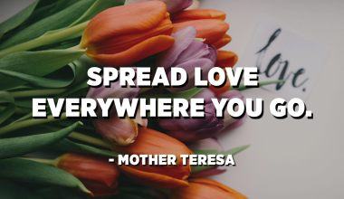 Spread love everywhere you go. - Mother Teresa​