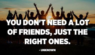 No necessiteu molts amics, només els correctes. - Desconegut