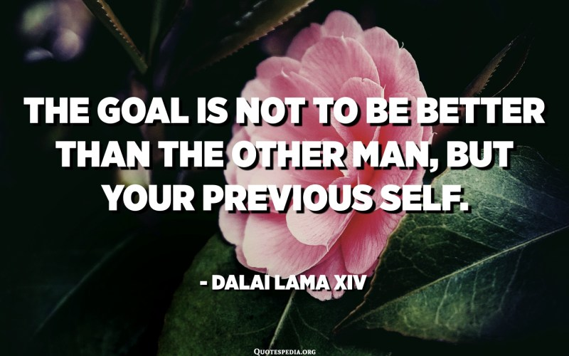 The goal is not to be better than the other man, but your previous self. - Dalai Lama XIV