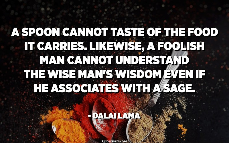 A spoon cannot taste of the food it carries. Likewise, a foolish man cannot understand the wise man's wisdom even if he associates with a sage. - Dalai Lama