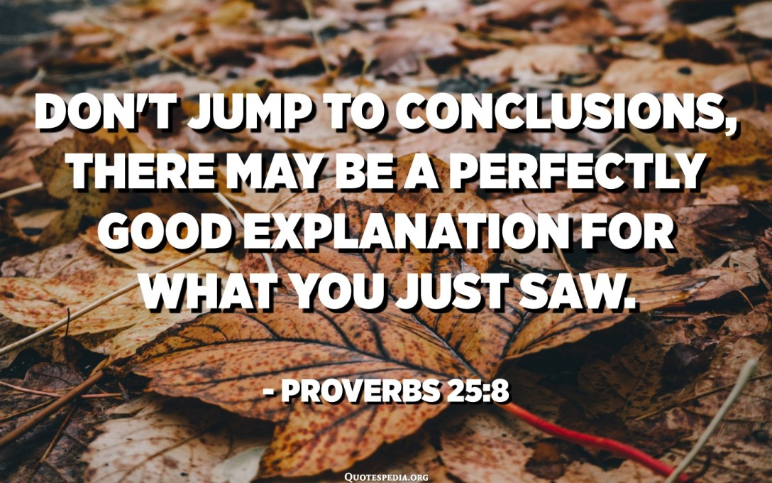Don't jump to conclusions, there may be a perfectly good explanation for what you just saw. - Proverbs 25:8