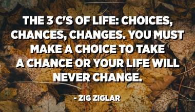 인생의 3 가지 C : 선택, 기회, 변화. 기회를 잡으려면 선택해야합니다. 그렇지 않으면 인생이 바뀌지 않을 것입니다. -지그 지글 라