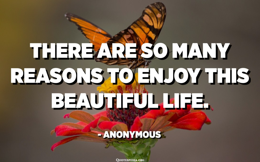 There are so many reasons to enjoy this beautiful life. - Anonymous
