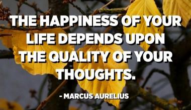 La felicitat de la teva vida depèn de la qualitat dels teus pensaments. - Marcus Aurelius