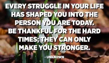 Every struggle in your life has shaped you into the person you are today. Be thankful for the hard times; they can only make you stronger. - Unknown