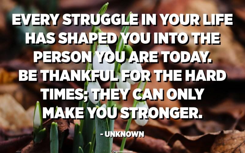 كل صراع في حياتك شكلك في الشخص الذي أنت عليه اليوم. كن شاكراً للأوقات الصعبة. يمكنهم فقط أن يجعلوك أقوى. - مجهول