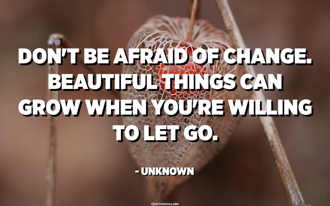 Don't be afraid of change. Beautiful things can grow when you're willing to let go. - Unknown