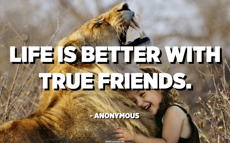 Life is better with true friends. - Anonymous