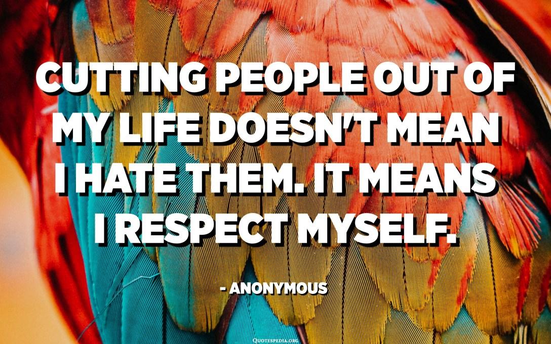 Eliminar la gent de la meva vida no vol dir que els odio. Vol dir que em respecto. - Anònim