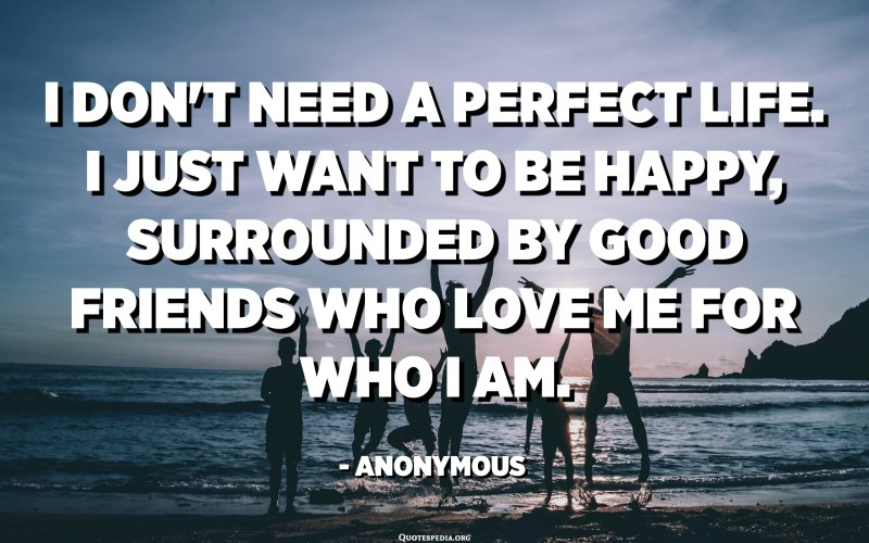 I don't need a perfect life. I just want to be happy, surrounded by good friends who love me for who I am. - Anonymous