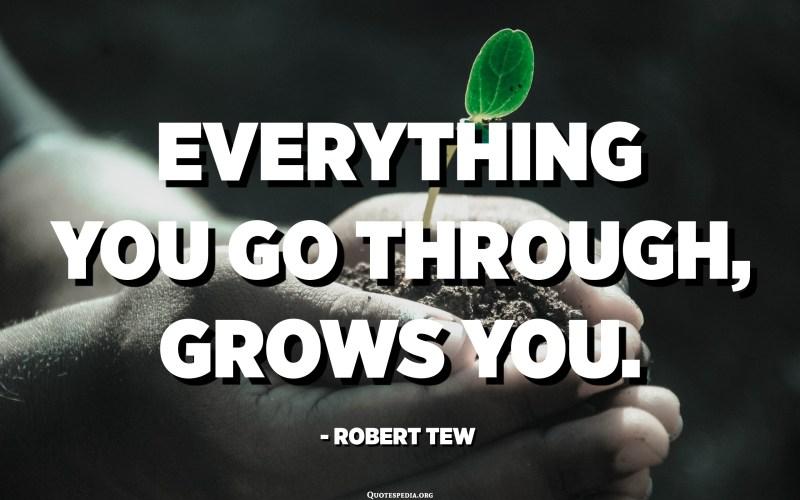 Everything you go through, grows you. - Robert Tew