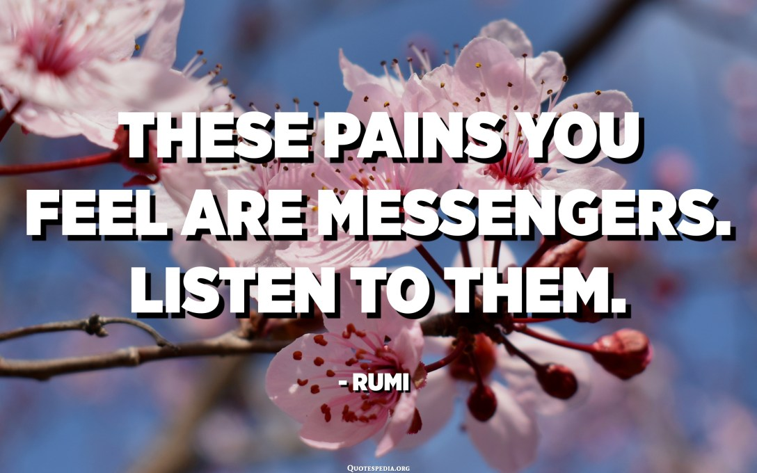 These pains you feel are messengers. Listen to them. - Rumi
