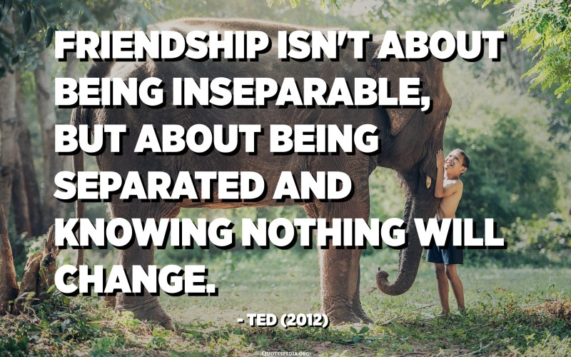 Friendship isn't about being inseparable, but about being separated and knowing nothing will change. - Ted (2012)