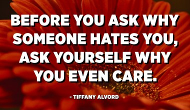 Before you ask why someone hates you, ask yourself why you even care. - Tiffany Alvord