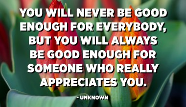 You will never be good enough for everybody, but you will always be good enough for someone who really appreciates you. - Unknown