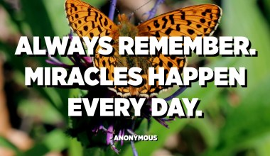 Always remember. Miracles happen every day. - Anonymous