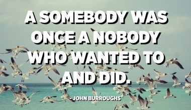 A somebody was once a nobody who wanted to and did. - John Burroughs