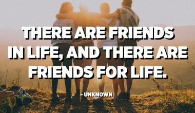 اتي زندگي ۾ دوست آھن ، ۽ زندگي لاءِ دوست آھن۔ - نامعلوم