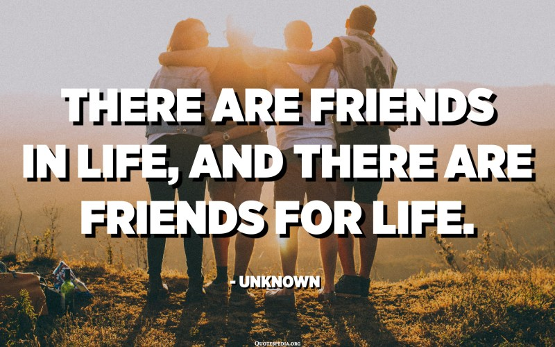 There are friends in life, and there are friends for life. - Unknown