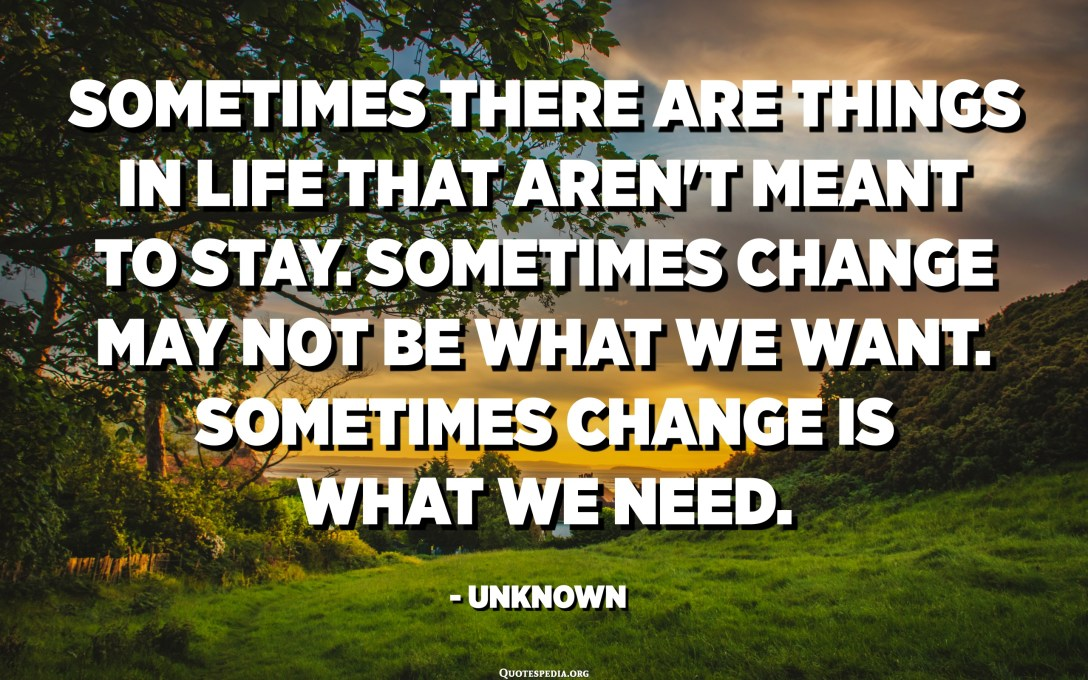 Sometimes there are things in life that aren't meant to stay. Sometimes change may not be what we want. Sometimes change is what we need. - Unknown
