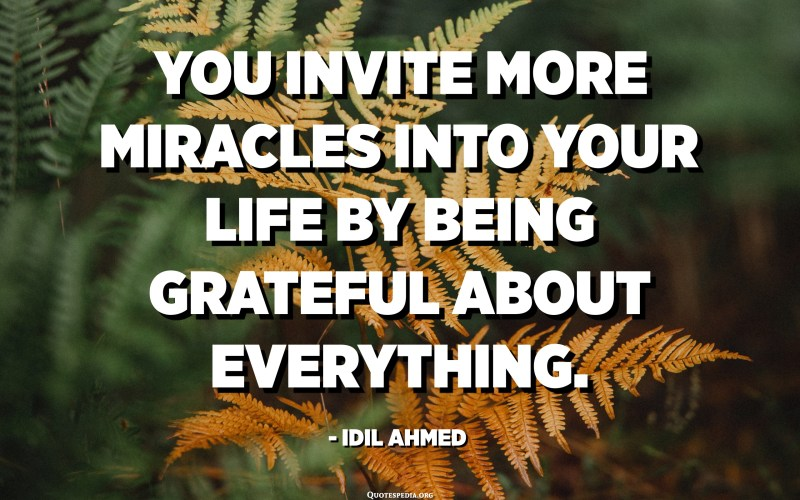 You invite more miracles into your life by being grateful about everything. - Idil Ahmed