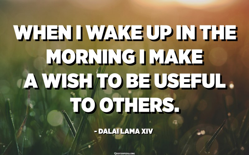 When I wake up in the morning I make a wish to be useful to others. - Dalai Lama XIV