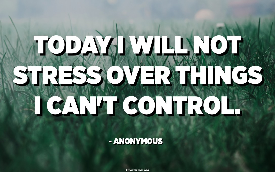 Today I will not stress over things I can't control. - Anonymous