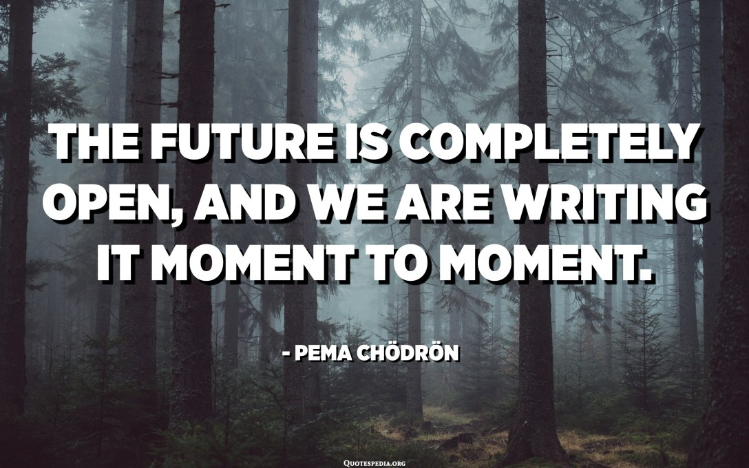 The future is completely open, and we are writing it moment to moment. - Pema Chödrön