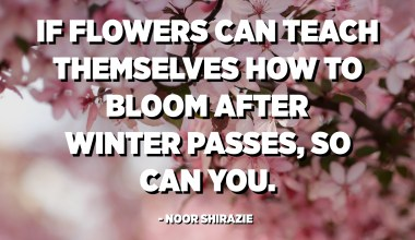 If flowers can teach themselves how to bloom after winter passes, so can you. - Noor Shirazie