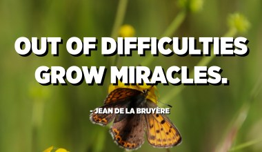 Out of difficulties grow miracles. - Jean de La Bruyère