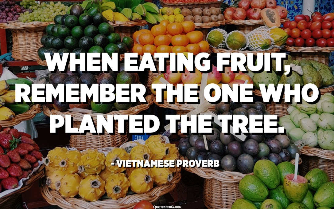 When eating fruit, remember the one who planted the tree. - Vietnamese Proverb