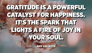 Gratitude is a powerful catalyst for happiness. It's the spark that lights a fire of joy in your soul. - Amy Collette