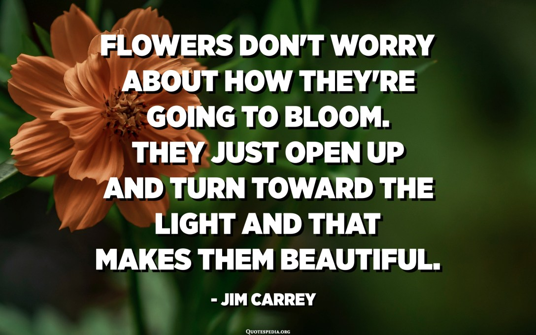 Flowers don't worry about how they're going to bloom. They just open up and turn toward the light and that makes them beautiful. - Jim Carrey