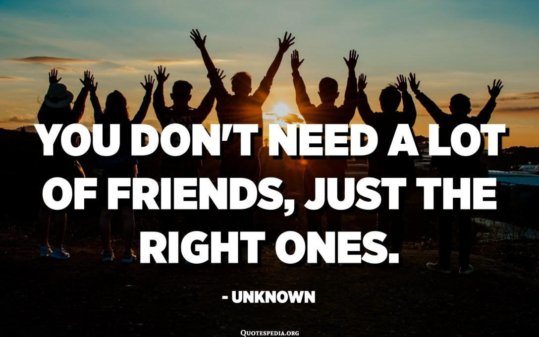 You don't need a lot of friends, just the right ones. - Unknown