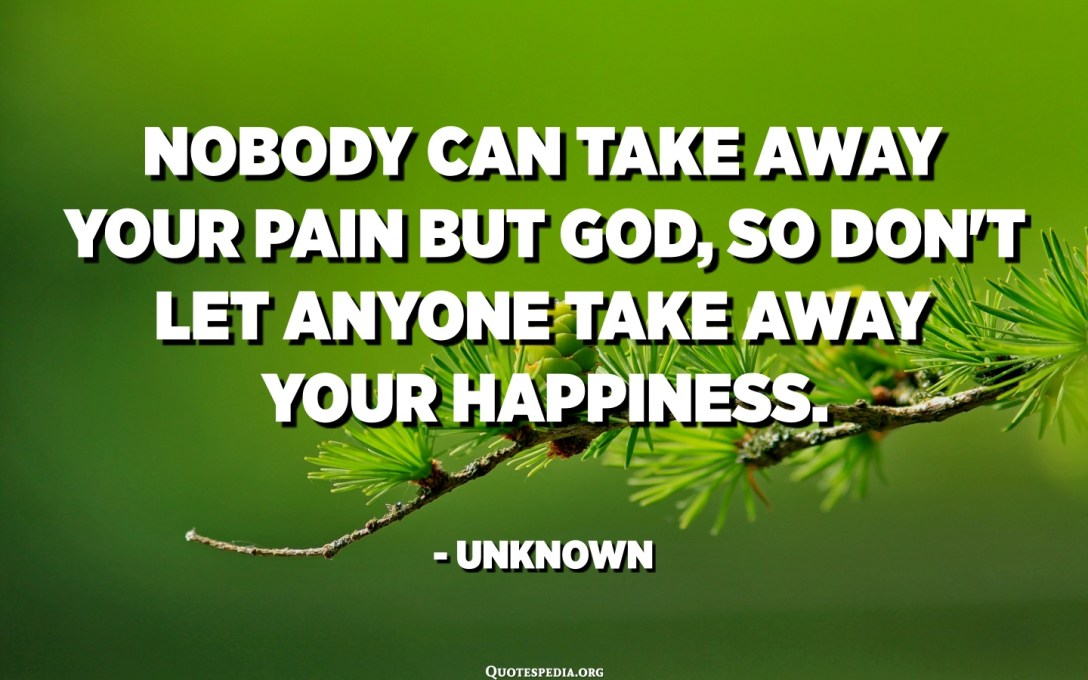 Nobody can take away your pain but God, so don't let anyone take away your happiness. - Unknown