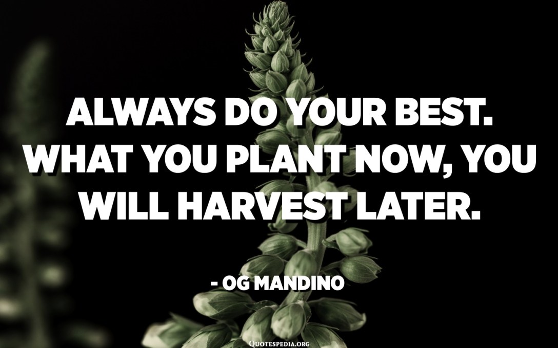 Always do your best. What you plant now, you will harvest later. - Og Mandino
