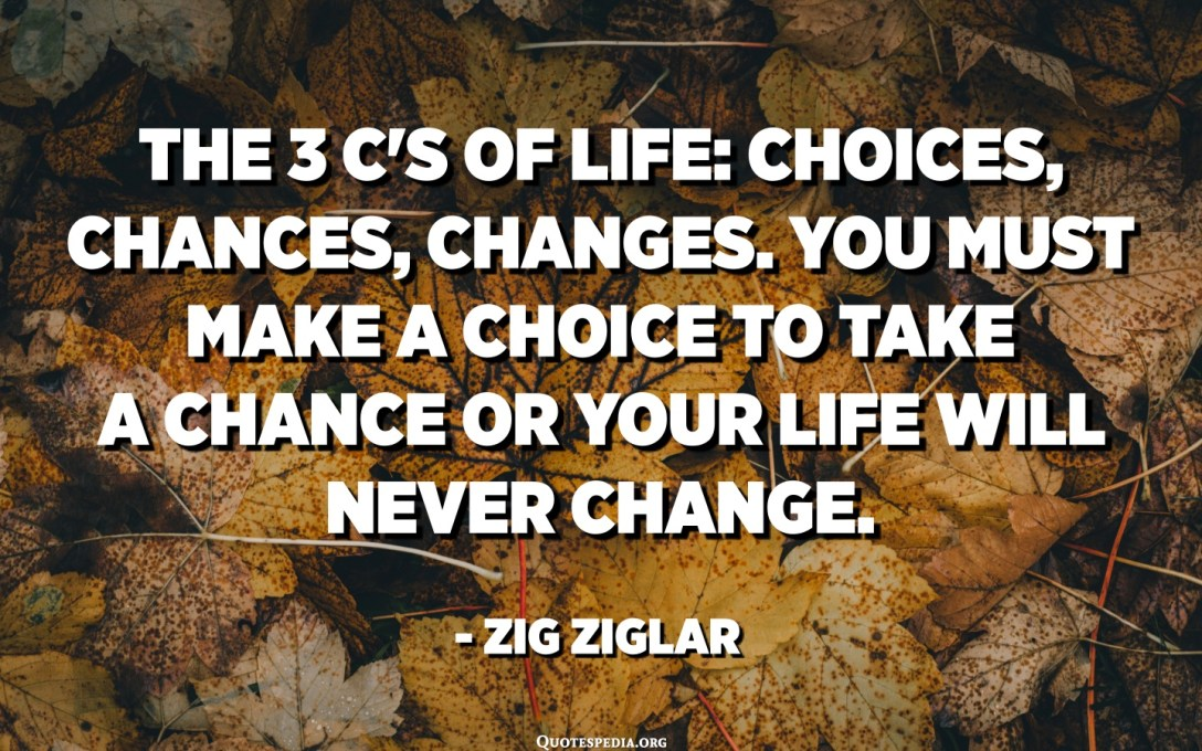 The 3 C's of Life: Choices, Chances, Changes. You must make a choice to take a chance or your life will never change. - Zig Ziglar