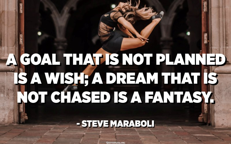 A goal that is not planned is a wish; a dream that is not chased is a fantasy. - Steve Maraboli